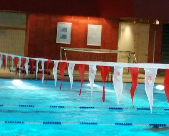 Schwimmsport Ausrüstung: Rückenfähnchen für Rückenschwimmen